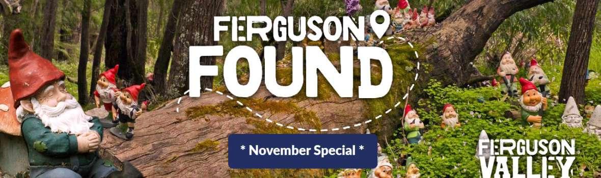 ferguson_found